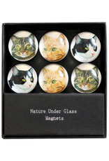 MAGNET SET-GLASS-TRADITIONAL CATS, 6PC