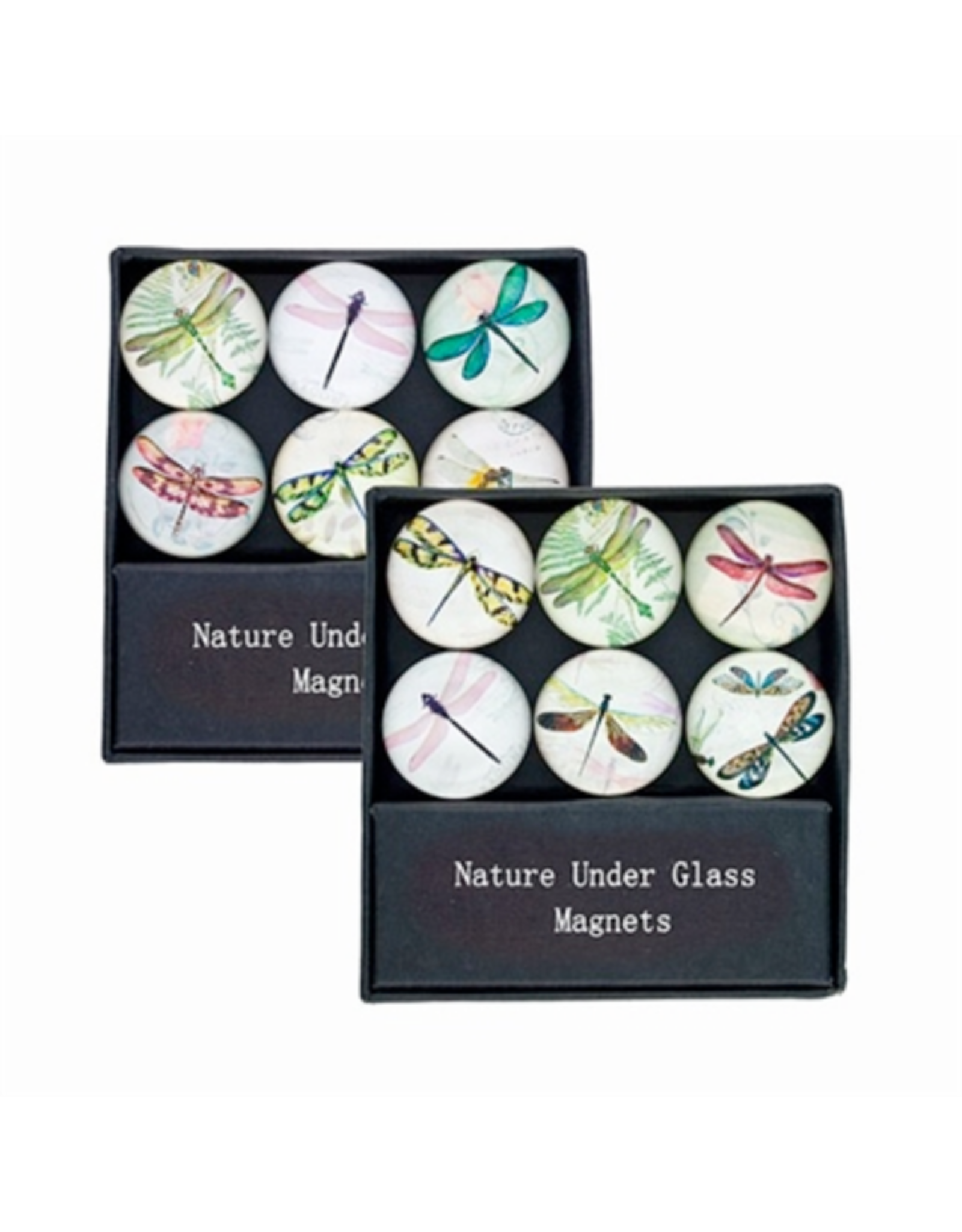 MAGNET SET-GLASS-DRAGONFLY, 6PC