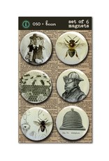 MAGNET SET- 6PC