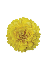 "HEADWEAR-DECORATION-FLOWER  4"", POLY"