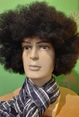 WIG-CTR-AFRO BUDGET