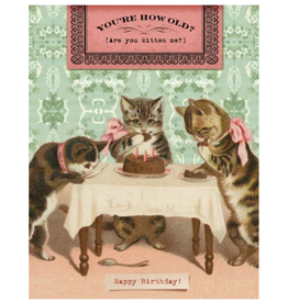 """CARD-BIRTHDAY """"ARE YOU KITTEN ME"""""""