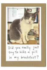 """Faire/Visual Treats CARD-HUMOR """"DID YOU REALLY? CAT"""