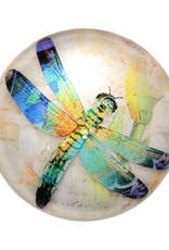 PAPERWEIGHT-GLASS DOME, DRAGONFLY