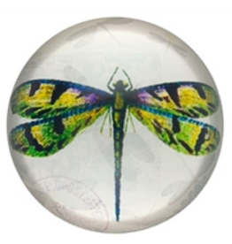 PAPERWEIGHT-GLASS DOME, GREEN DRAGONFLY
