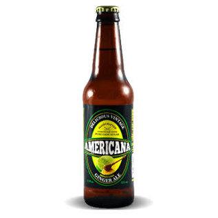 Soda at Rocket Fizz Lancaster Americana Honey Lime Ginger Ale