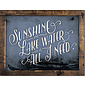 "Novelty  Metal Tin Sign 12.5""Wx16""H Sunshine & Lake Water Novelty Tin Sign"