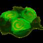 www.RocketFizzLancasterCA.com Key Lime Salt Water Taffy ( 7 Taffies for $1.00)