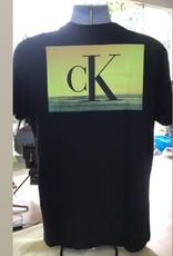 Calvin Klein Calvin Klein Tees Festival Photoprint
