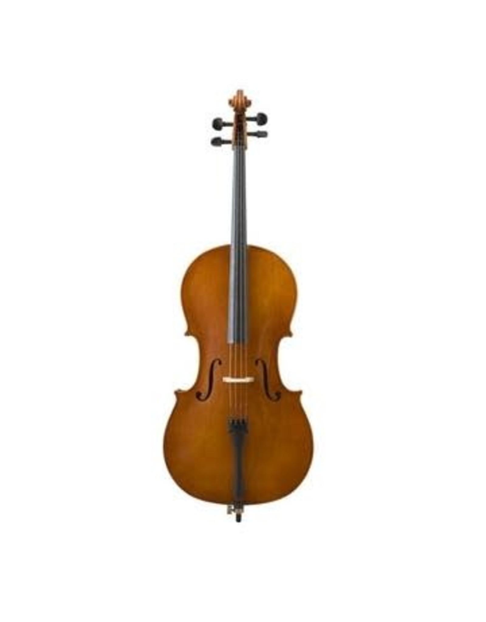 Ensemble de Violoncelle S. Eastman 80