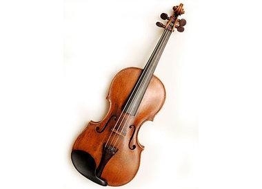 Professeurs de violon