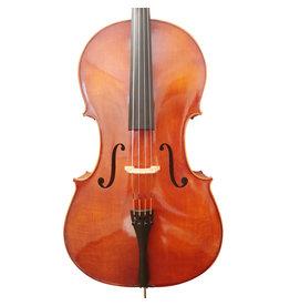 Ensemble de Violoncelle Eastman 100