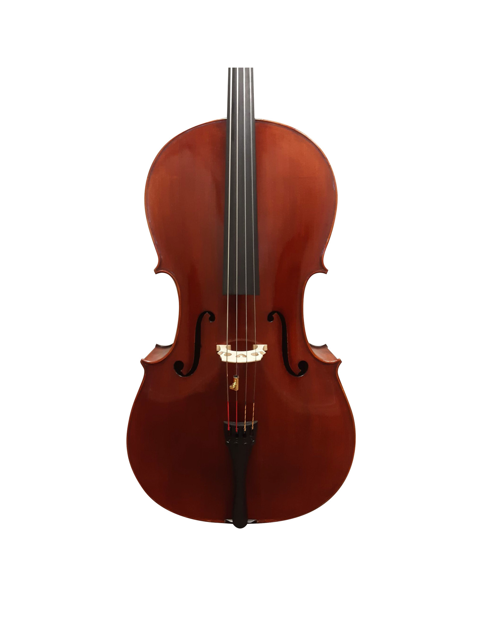 Violoncelle Scampi 320