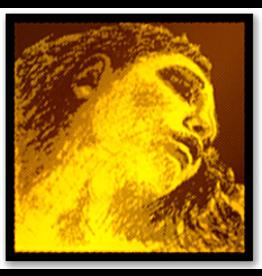 Corde Violon JEU Evah GOLD (Sol Argent, Mi Boule)