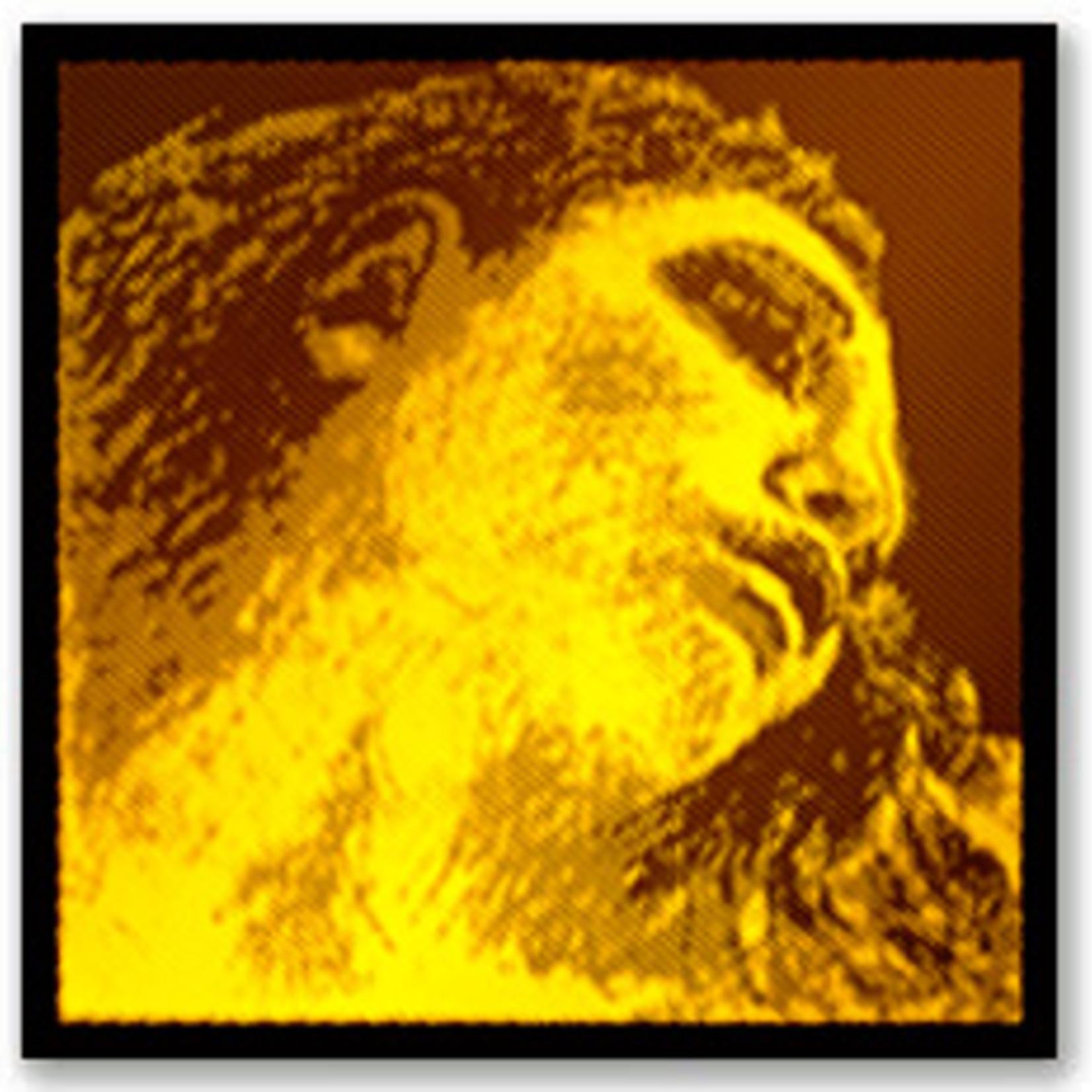 Corde Violon JEU Evah GOLD (Sol Or, MI Loop)