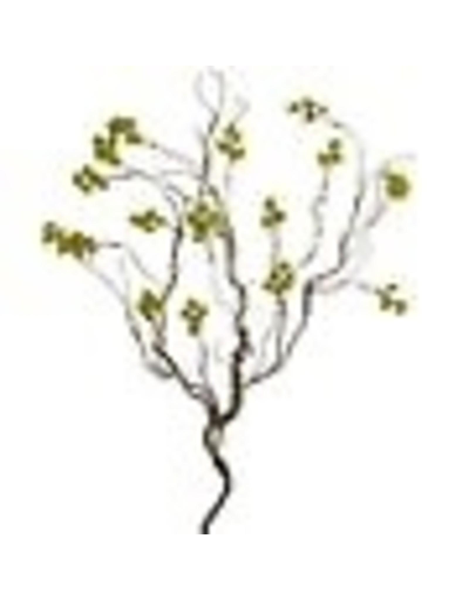 The Florist & The Merchant Green Berry Stem