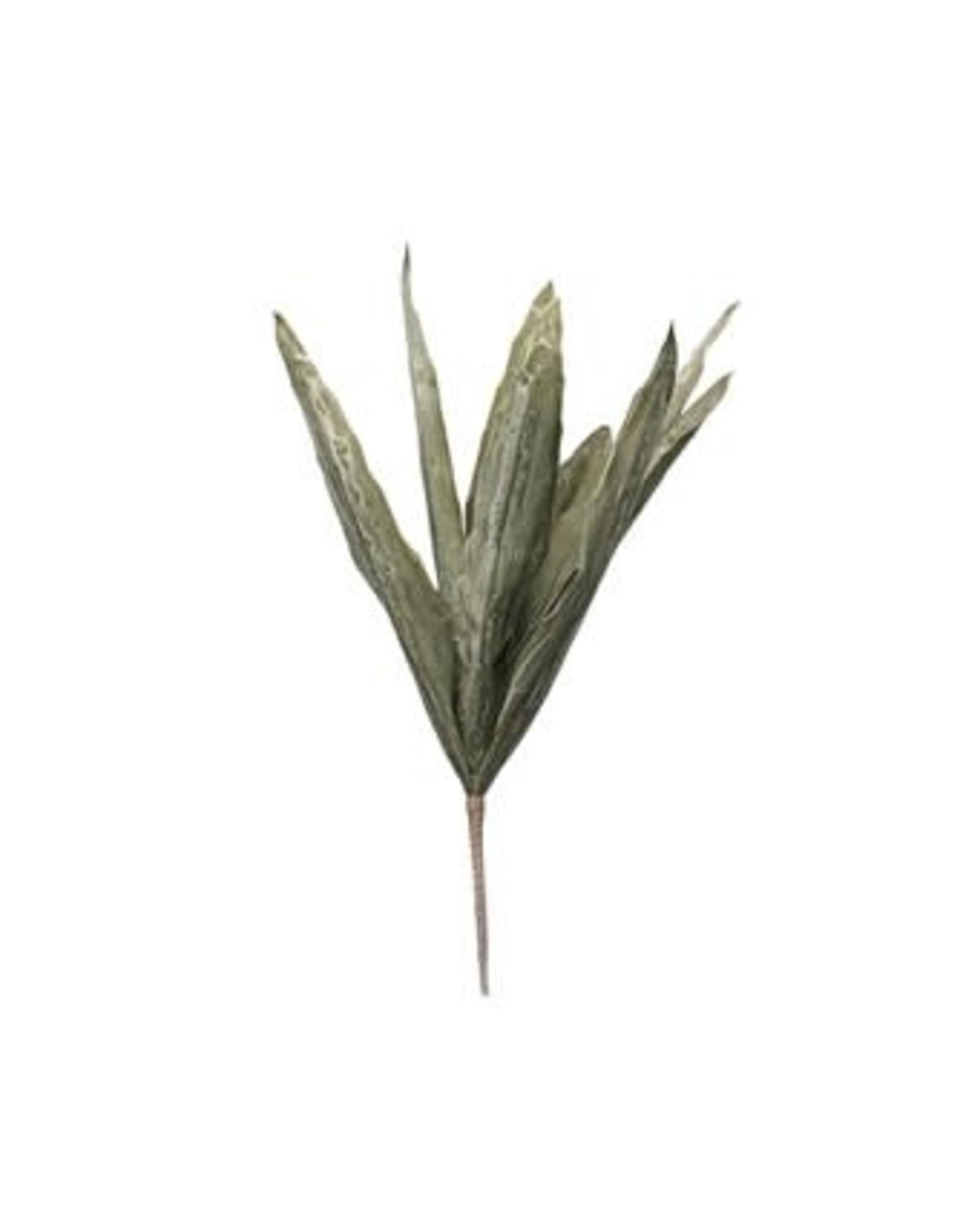 Creative Co-op Large Green Leaf Branch - Aloe