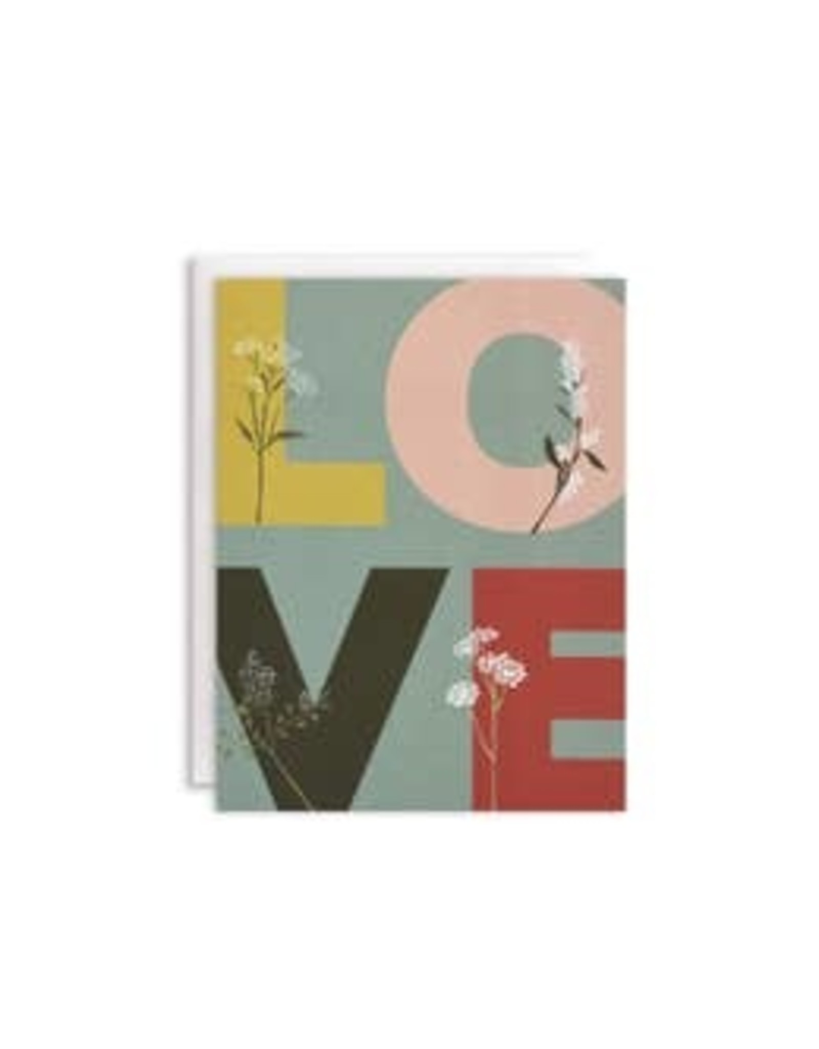 June & December Boxed Note Cards - Overgrown Love