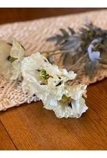 The Florist & The Merchant Long Stem Poppy - Cream