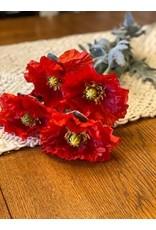 Long Stem Poppy - Red