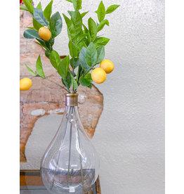 The Florist & The Merchant Lemon Greenery Stems