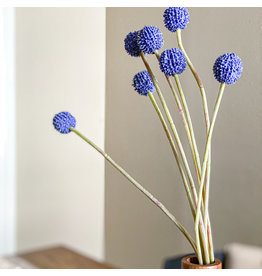 The Florist & The Merchant Indigo Billy Button/Ball Stem