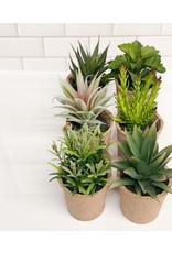 """Creative Co-op 7 1/4"""" Faux Succulent Pots"""