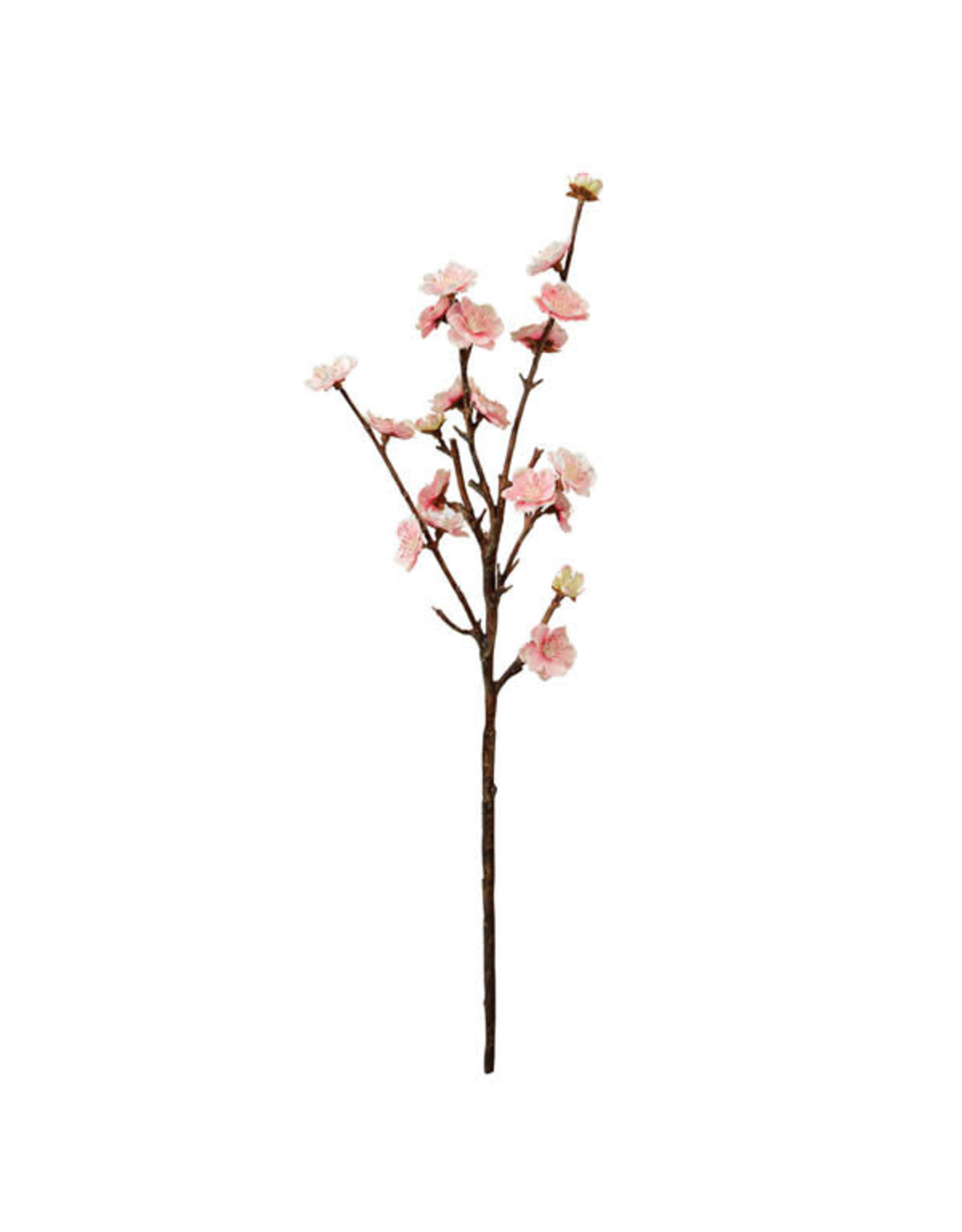 CTW Peach Blossom Spray