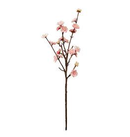 CTW Peach Blossom Spray