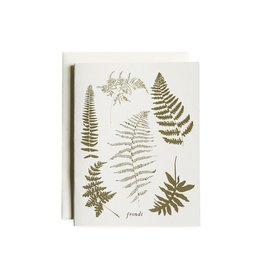 June & December Boxed Note Cards - Fronds