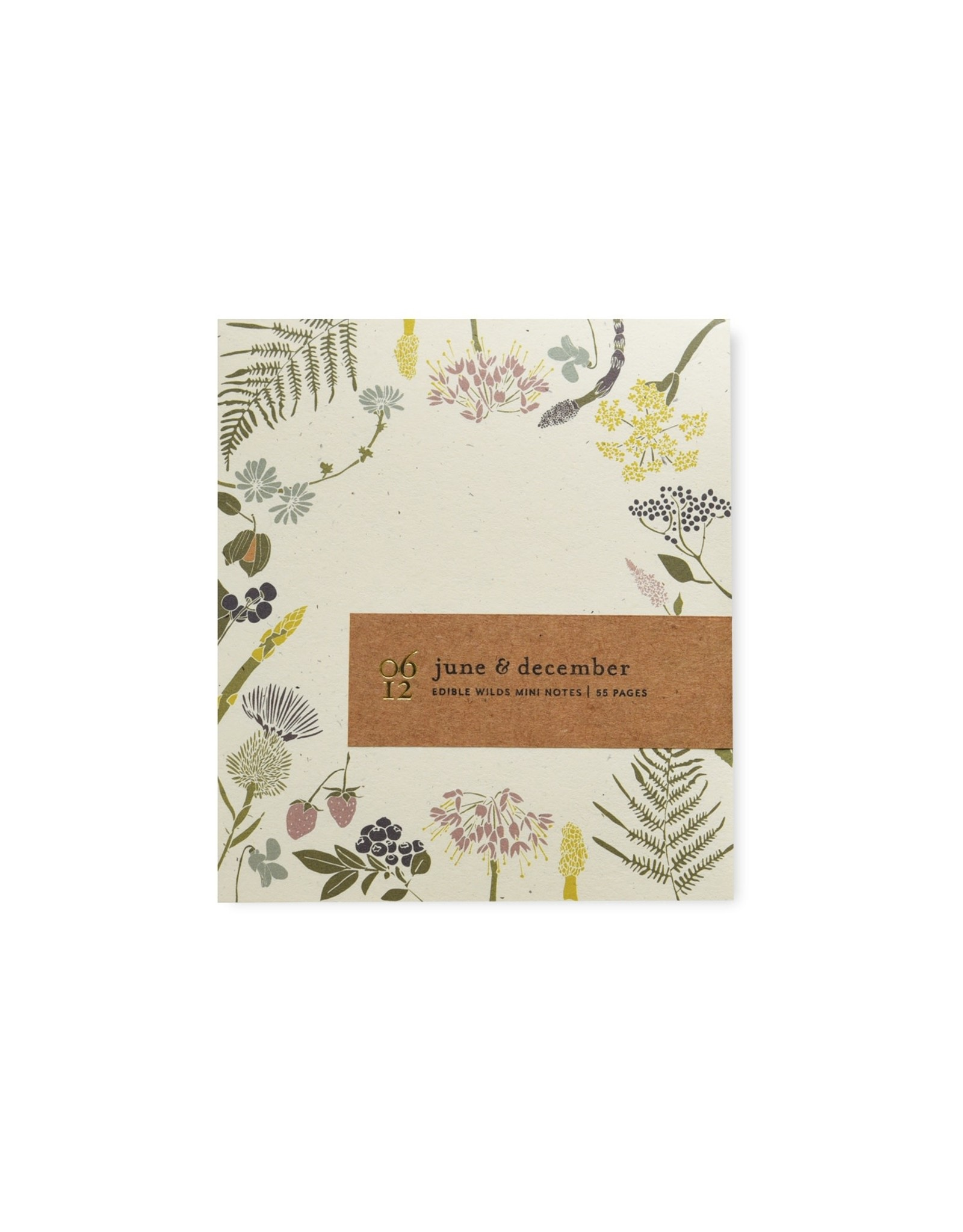 June & December Mini Notes - Edible Wild
