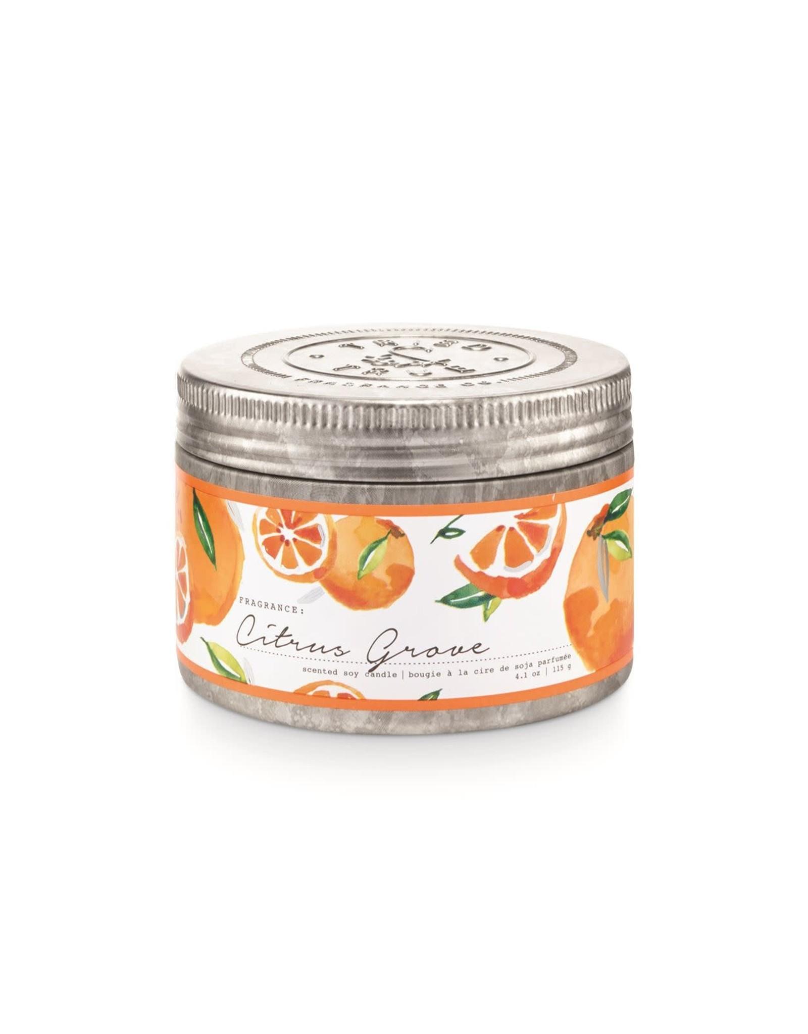 Tried & True 4.1 oz Tin Candle - Citrus Grove
