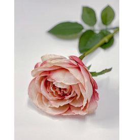 "The Florist & The Merchant 23"" H Faux Rose Stem - Mixed Pink"