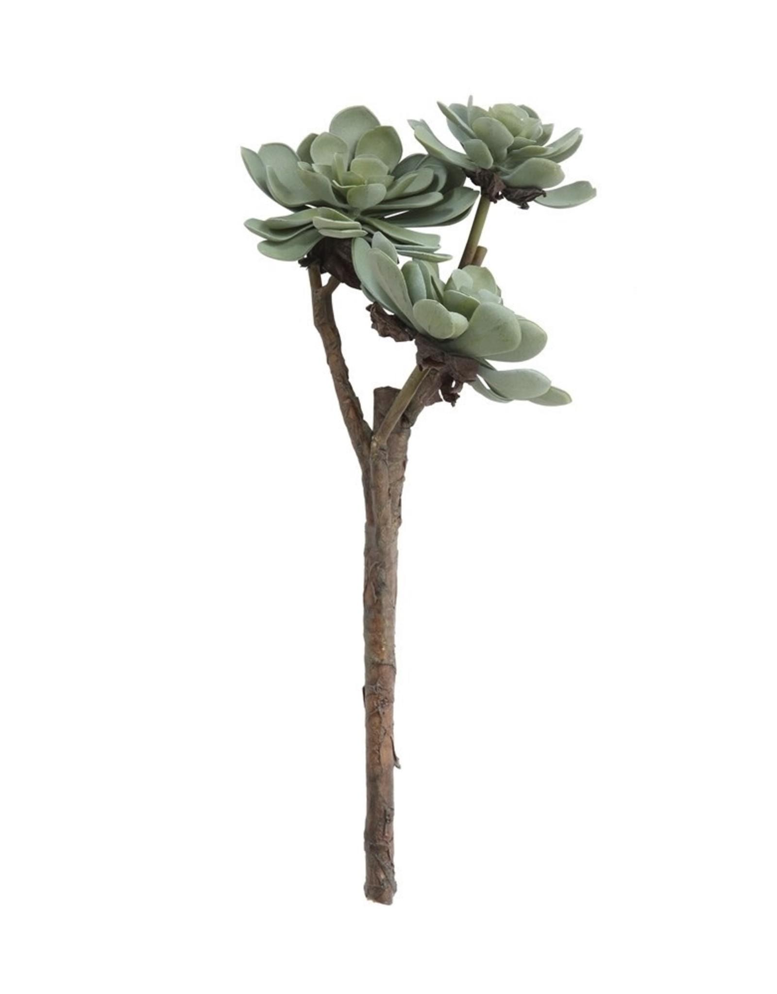 """Creative Co-op 15 1/2"""" Faux Succulent Branch - Aeonium"""