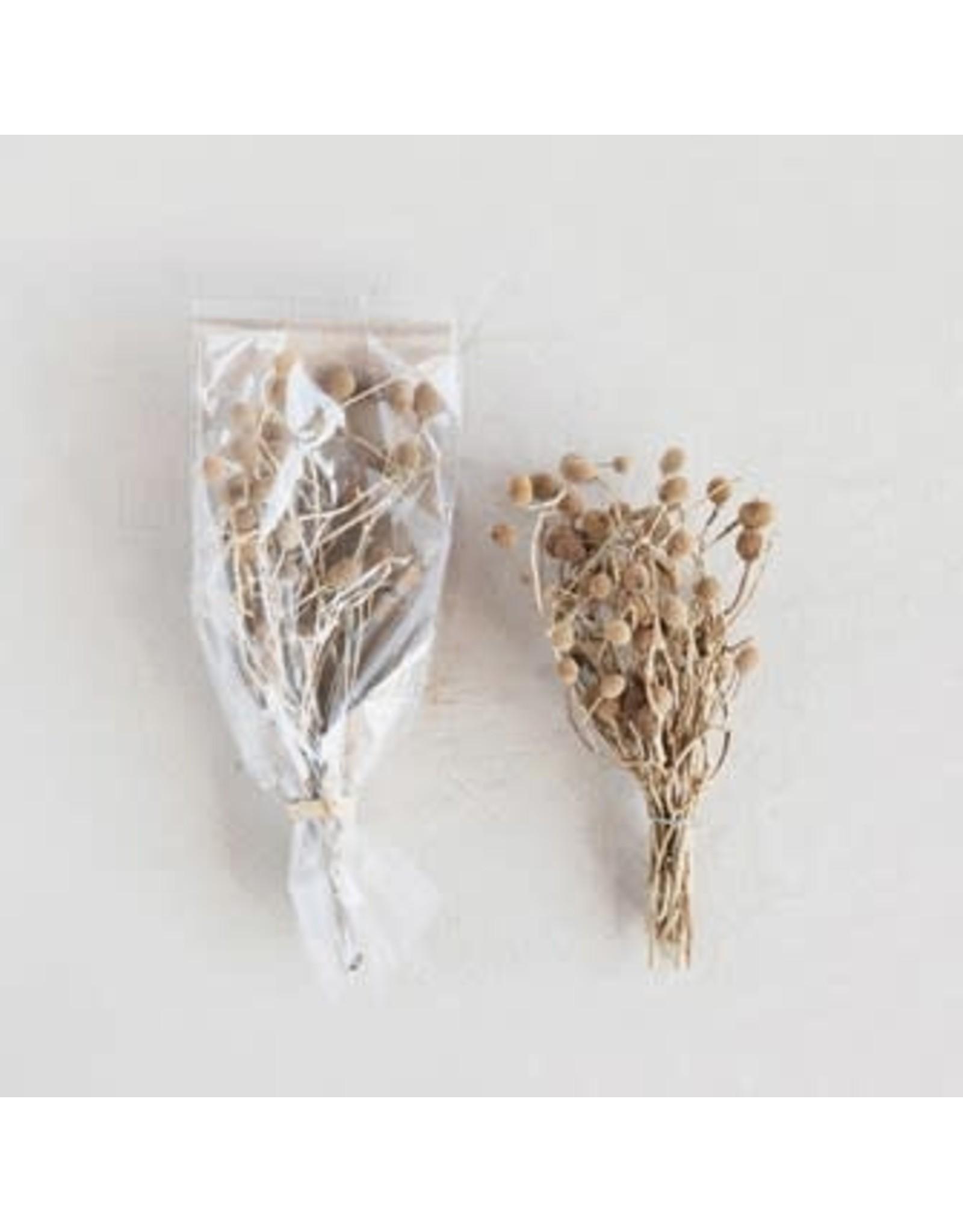 Creative Co-op Dried Bora Bouquet