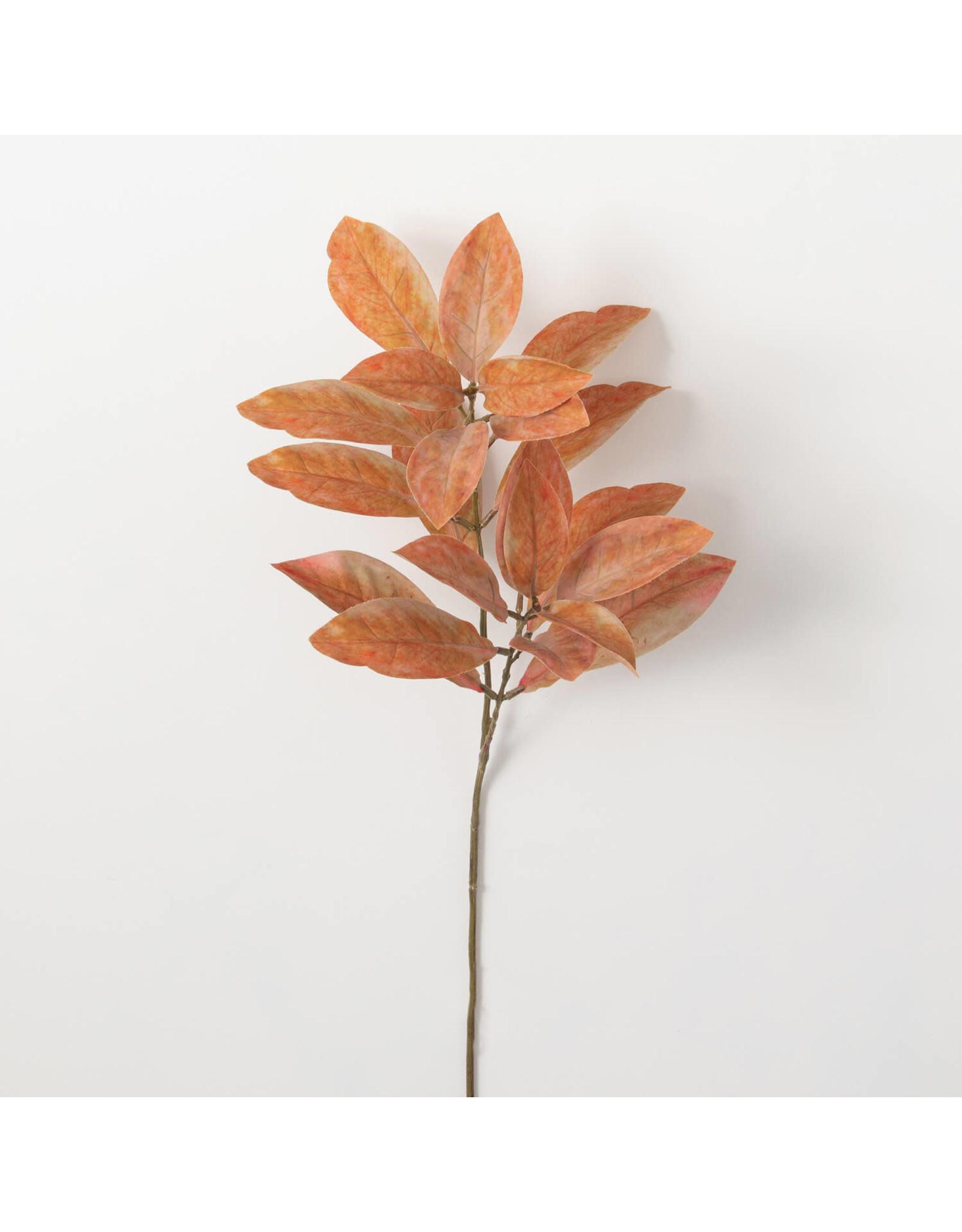 The Florist & The Merchant Fall Leaf Stem - Croton Stem