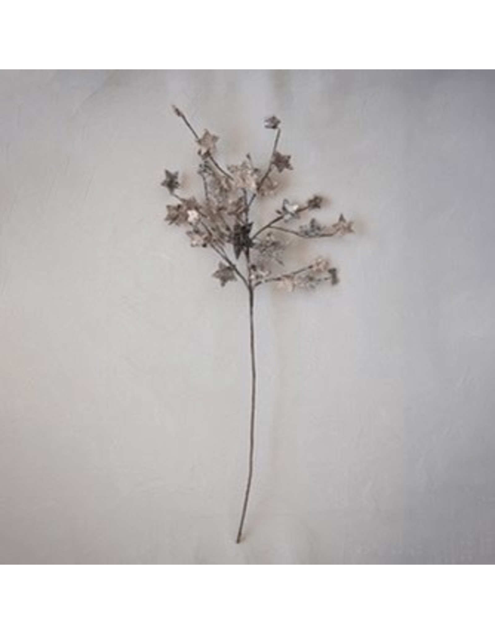 "The Florist & The Merchant 28"" Birch Bark Star Stem w/Glitter"