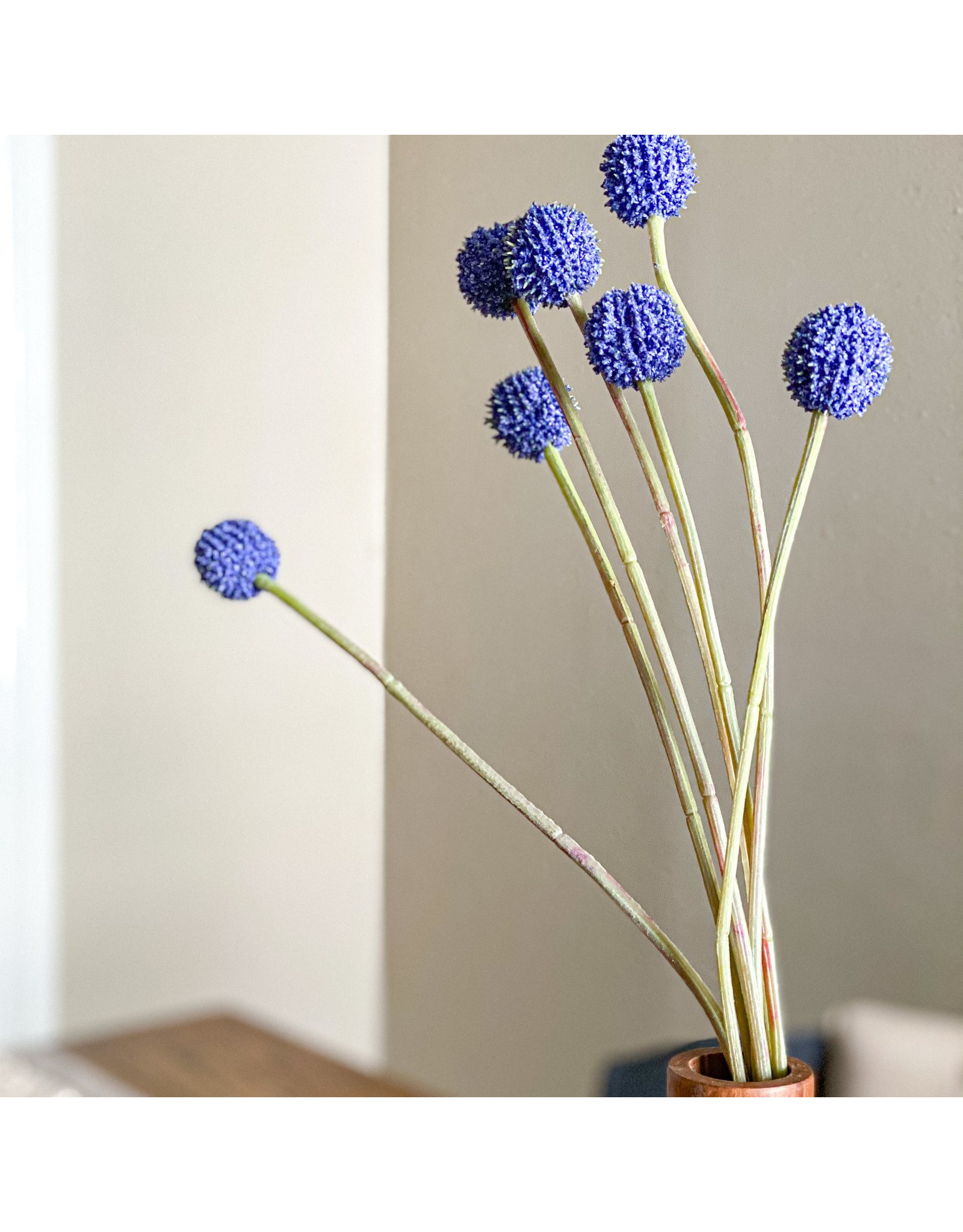 The Florist & The Merchant Billy Button/Ball Stem