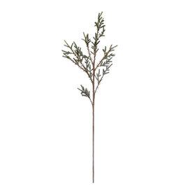 "The Florist & The Merchant 41"" Pine Branch"