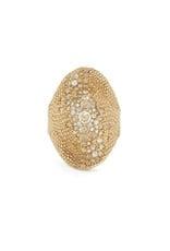 Venyx Venyx Chamaeleo Ring - Yellow Gold (Size: 7)