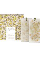 Lucia  par  Pure Living Tablettes de cire parfumées Feuille de laurier et olive