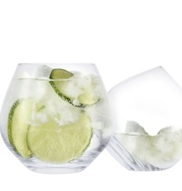 Ens  4 Verres Gin Tonic
