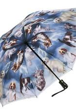 Petit parapluie chats - chiens