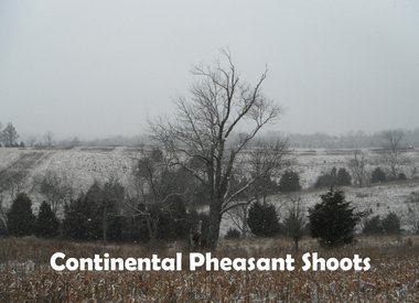Continental Pheasant Shoots