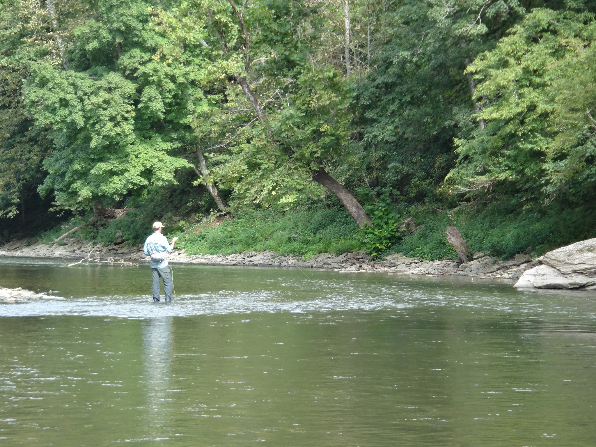 working for nice fish on the Elkhorn