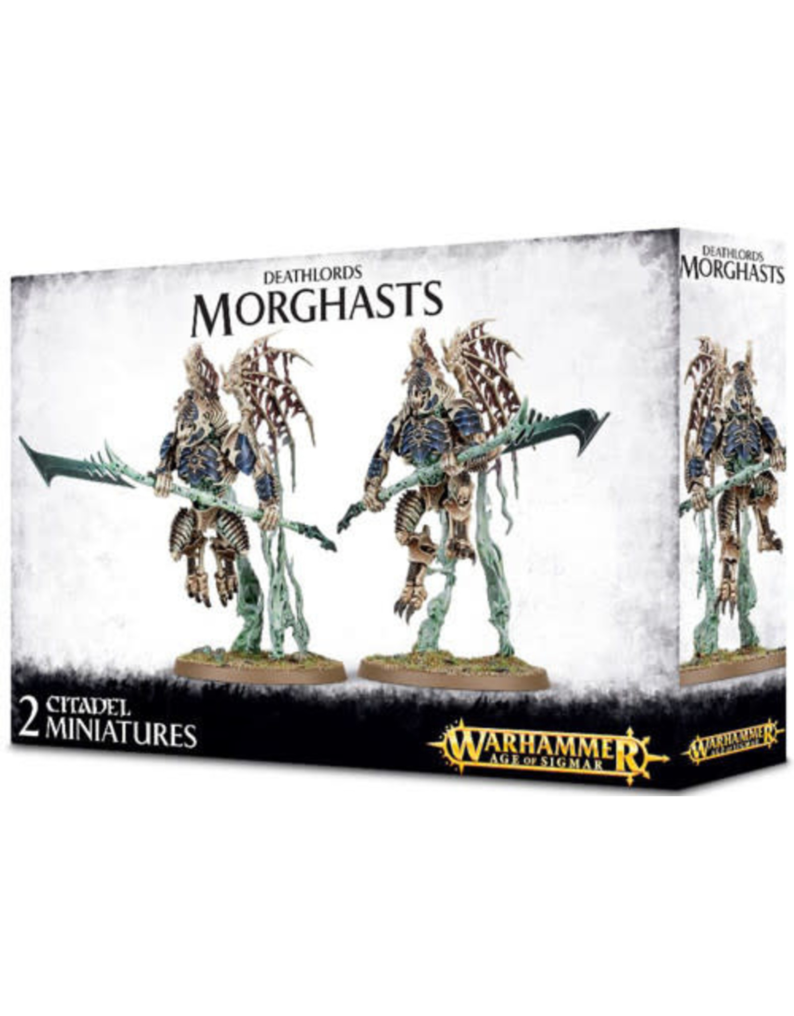 Deathlords Morghast (AOS)