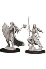 D&D Unpainted Minis: Elf Female Paladin