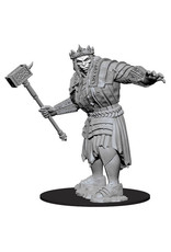D&D Unpainted Minis: Fire Giant