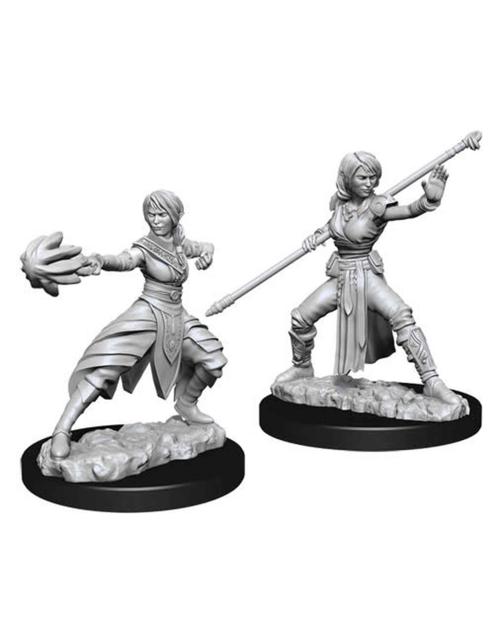 D&D Unpainted Minis: Half-Elf Female Monk (Wave 10)