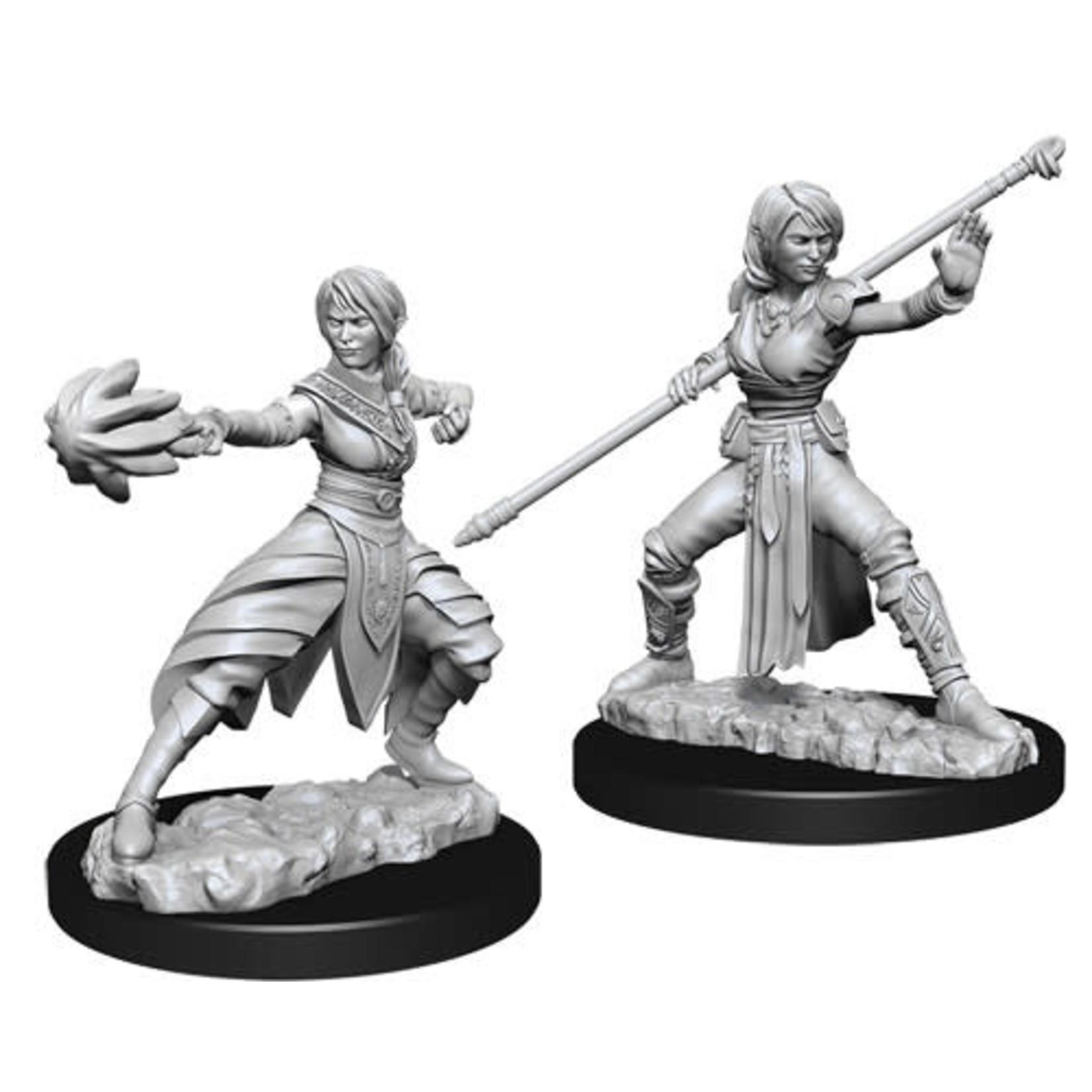 D&D Unpainted Minis: Half-Elf Female Monk (Wave 10)